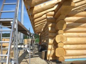 Gartenhaus-Holz: Wandstärke sollte schon den Ansprüchen entsprechen
